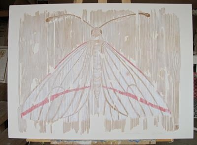Vanishing Vestal / White Moth wth pink stripe