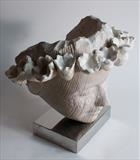 Sea Flower Head by Jilly Sutton, Sculpture, Cast Olivestone or bronze