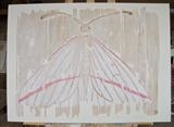 Vanishing Vestal / White Moth wth pink stripe by Jilly Sutton, Painting, Painted Relief