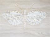 White Moth by Jilly Sutton ARBS, Painting, Painted Relief
